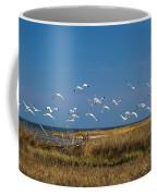 Ibis Flight Coffee Mug