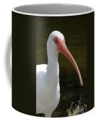 Ibis Portrait Coffee Mug