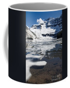 Ice In The Water Coffee Mug