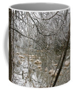 Ice Pond Coffee Mug