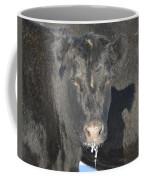 Iced Beef Coffee Mug by Bonfire Photography