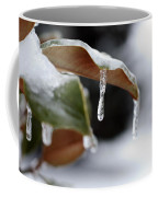 Iced Magnolia Coffee Mug