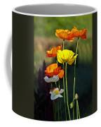 Iceland Poppies In The Sun Coffee Mug