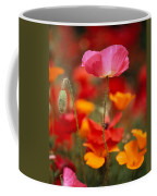 Iceland Poppies Papaver Nudicaule Coffee Mug