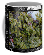 Icy Trees With Black And White Border Coffee Mug