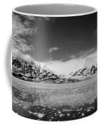 Icy Water Coffee Mug