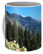 Idaho Mountain Side Coffee Mug