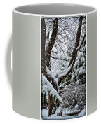 Idaho Spring Coffee Mug