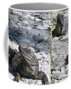 Iguana Bask In The Sun With You Coffee Mug