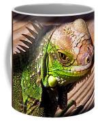 Iguana On The Deck At Mammacitas Coffee Mug