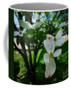 Illinois Capitol Dogwood Coffee Mug