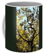 Illuminated Oak Tree Coffee Mug
