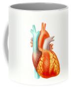 Illustration Of The Human Heart Coffee Mug