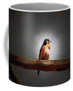 I'm A Bluebird And I'm Beautiful Coffee Mug