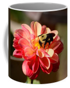 I'm On The New Pollen Diet Coffee Mug
