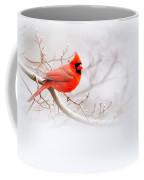 Img 2559-10 Coffee Mug