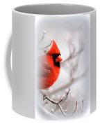 Img 2559-5 Coffee Mug