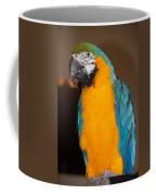 Img B67 Coffee Mug