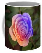 Img231 Coffee Mug