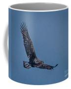 Immature Bald Eagle Coffee Mug