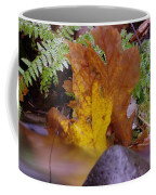 In Eveything Beauty Abides Coffee Mug