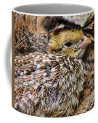 In Sheltered Love Coffee Mug