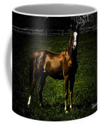In The Corral 1 - Featured In Comfortable Art And Wildlife Groups Coffee Mug