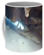 In The Dragon's Lair Coffee Mug