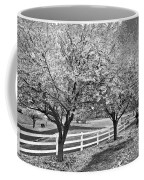 In The Park Coffee Mug