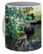 In The Shadows Of The Creek Coffee Mug