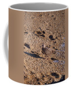 In The Stone Surf Gravel Cape May Nj Coffee Mug