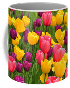 In The Tulip Garden Coffee Mug