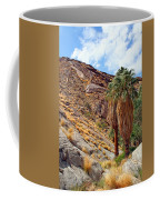 Indian Canyons View With Two Palms Coffee Mug