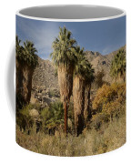 Indian Canyons Coffee Mug