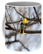 Indian Golden Oriole Coffee Mug