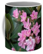 Indian Hawthorn Blossoms Coffee Mug