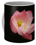 Indian Lotus On Black --- Sacred Light Coffee Mug