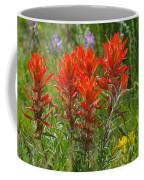 Indian Paint Brush Coffee Mug