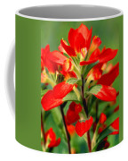 Indian Paintbrush I I Coffee Mug