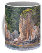 Indian Rock  Coffee Mug