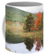 Indian Summer Acadia Park Coffee Mug