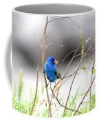 Indigo Bunting - 17 Coffee Mug