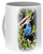 Indigo Bunting - Img 431-007 Coffee Mug