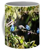 Indigo Bunting - Img 431-013 Coffee Mug