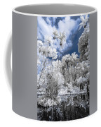 Infrared Pond And Reflections 2 Coffee Mug