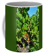 Inglenook Vineyard -10 Coffee Mug
