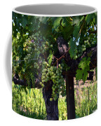 Inglenook Vineyard -11 Coffee Mug