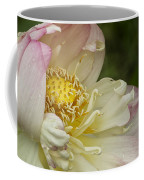 Inner Beauty Of The Lotus Coffee Mug
