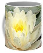 Inner Glow - White Water Lily Coffee Mug
