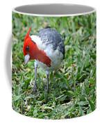 Inquisitive Redhead Coffee Mug